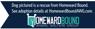 dog pictured is a rescue from Homeward Bound. For adoption details, visit Homewardboundawg.com