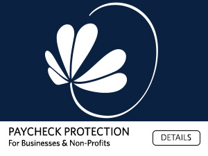 Paycheck Protection for businesses and non-profits. Details