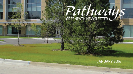 Pathways January 2016